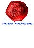 Grafika trička Holocronovské Tričko