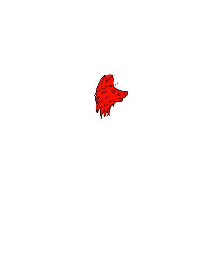 Obrázek trička IREXCREW tričko černé